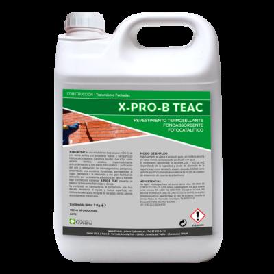 X-PRO-B TEAC